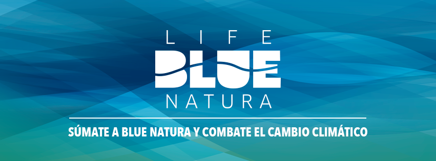 "The ""Blue Carbon Trip"" Itinerant Campaign Takes A Break Until Spring 2019"