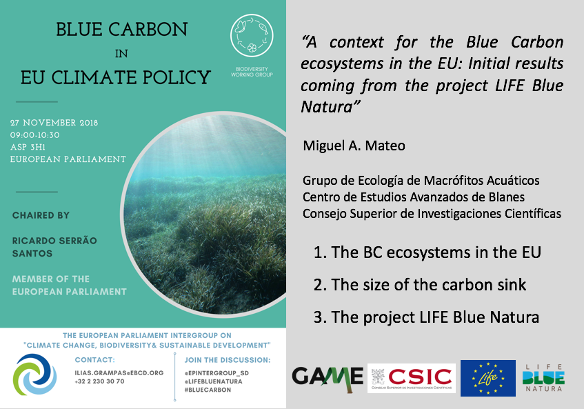 A Context For The Blue Carbon Ecosystems In The EU: Initial Results Coming From The Project LIFE Blue Natura